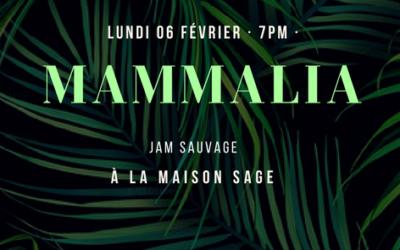 Comment on s'est perdu dans la luxuriante jungle musicale MAMMALIA avec ses créateurs